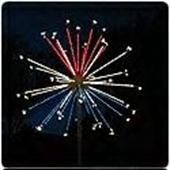 Fireworks Lights