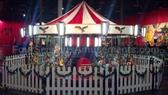Grande Beauty Carousel