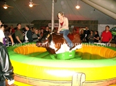 Mechanical Bull Simulator