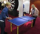 Mini Ping Pong Tables