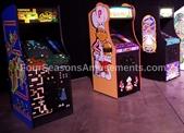 Arcade Video Game Classics (60 in 1 Multicade)